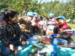 画像:りんご園で食べたお弁当は最高!でした1