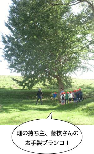 画像:畑の持ち主、藤枝さんのお手製ブランコ!