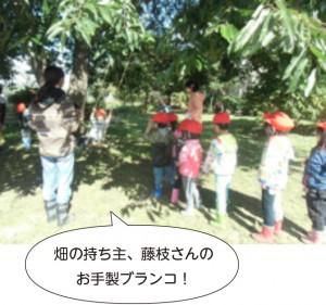 画像:畑の持ち主、藤枝さんの お手製ブランコ!