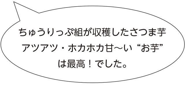 """画像:ちゅうりっぷ組が収穫したさつま芋 アツアツ・ホカホカ甘~い""""お芋"""" は最高!でした。"""