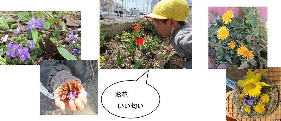 画像:お花いい匂い